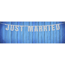 Papiergirlande Just Married silber 1,7m